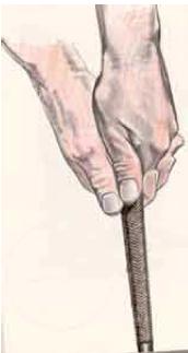 Muscoli lato sinistro