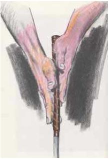 Grip con i palmi delle mani
