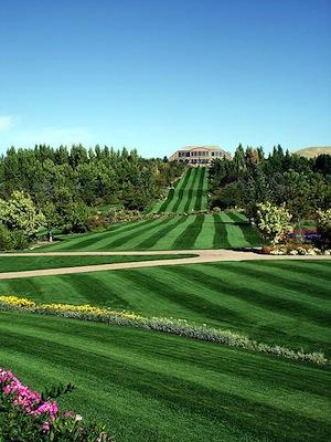L'allegra vita dei golfisti – il fairway